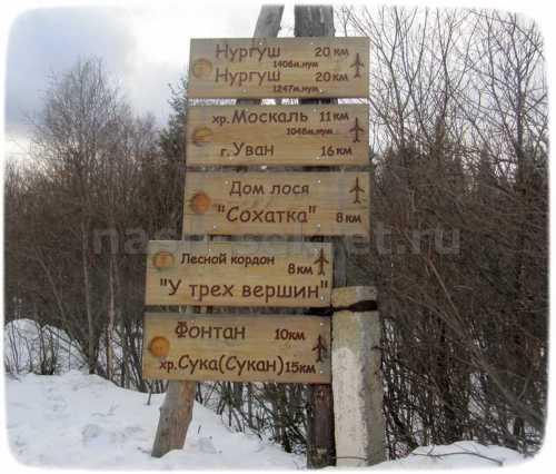 туры выходного дня по россии